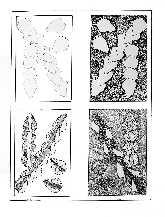Pen & Ink Drawing - Study In Arrowheads by Susan Clay