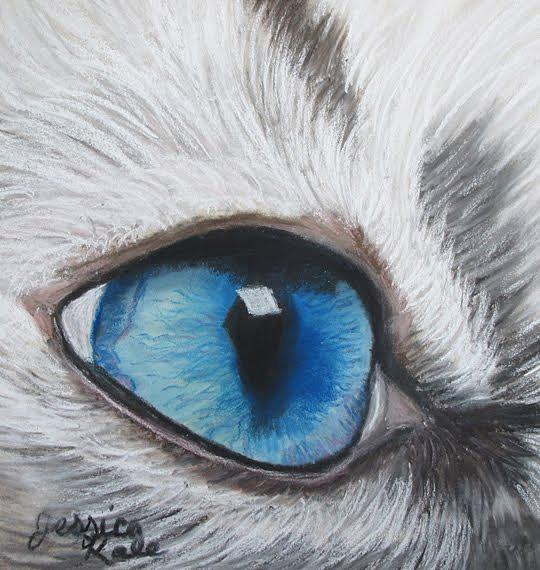 Cat Pastel - Study Of A Cats Eye by Jessica Kale