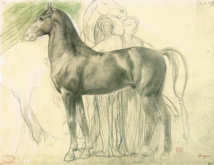 Study Drawing - Study Of A Horse With Figures by Edgar Degas