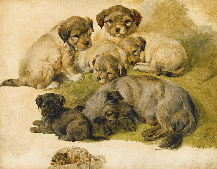 Study Of A Terrier And Puppies Painting By Circle Of Edwin Landseer