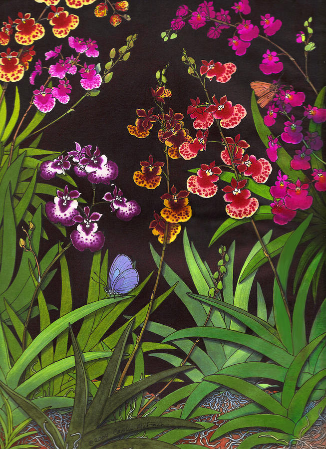 Orchids Painting - Study Of Equitant Oncidium Orchids by Carolyn McFann