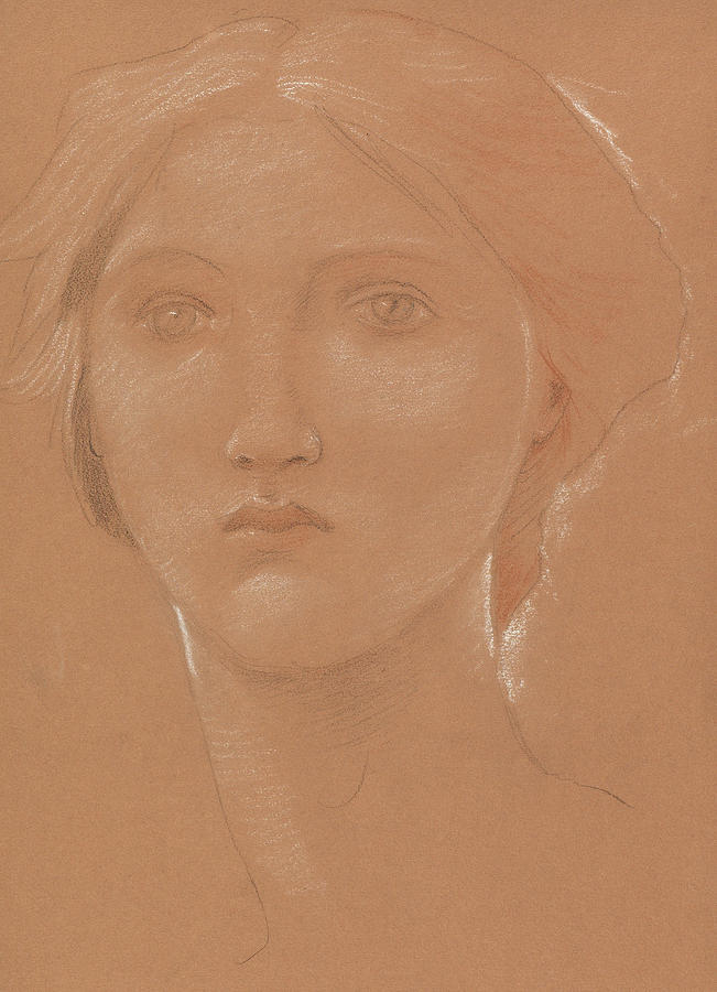 Burne-jones Drawing - Study Of The Head Of Margaret Burne Jones by Edward Coley Burne-Jones