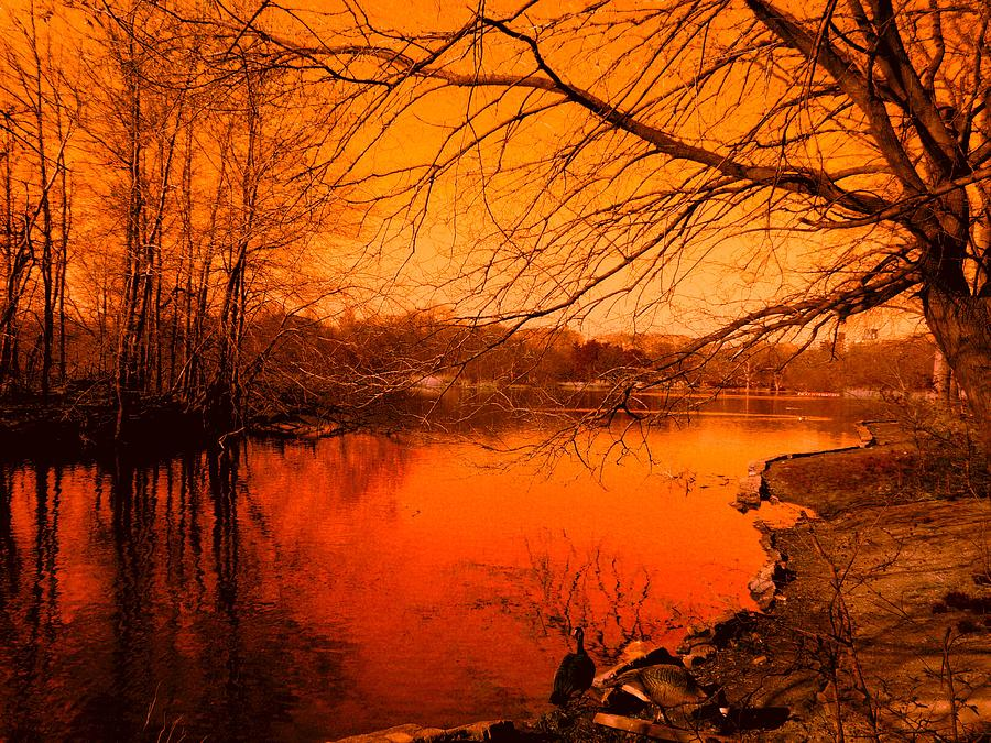 Landscape Photograph - Studying The Sunset by Kendall Eutemey