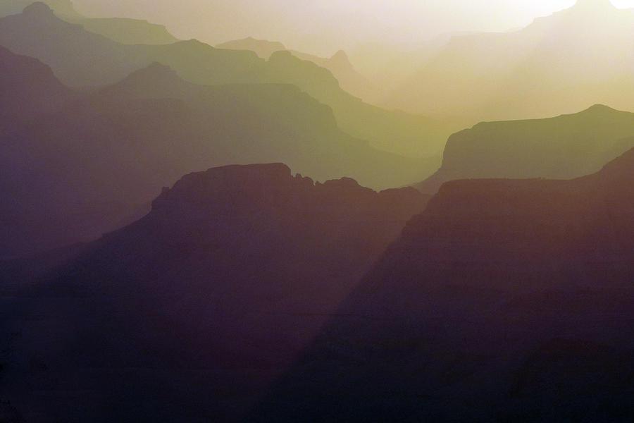 Subtle Silhouettes Photograph