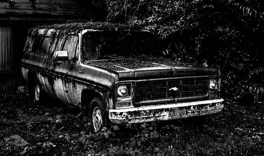 suburban decay photograph by tyrone russ
