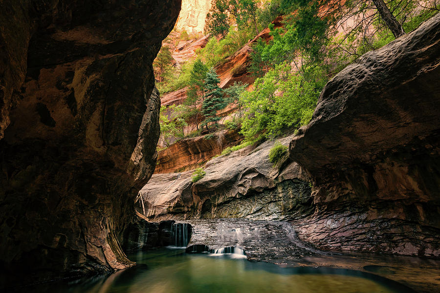 Subway Canyon by Dave Koch