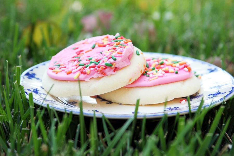 Sugar Cookies With Sprinkles Photograph