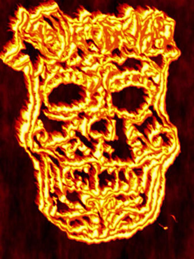 Sugar Skull Of Fire Drawing by Art by Angel C