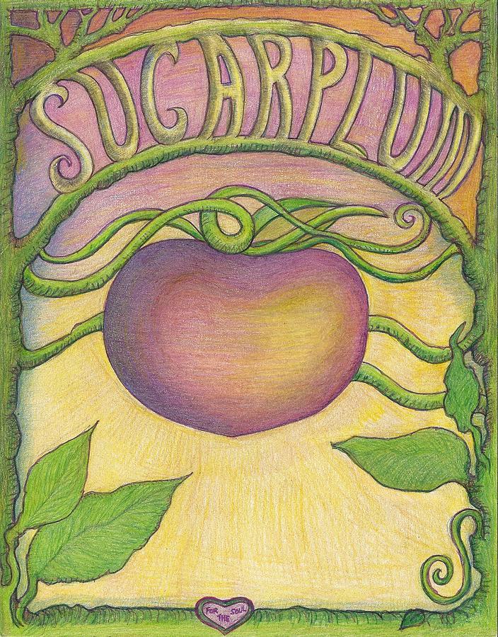 Sugarplum #4 Drawing by Cynthia Silverman