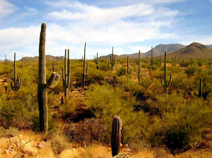 Arizona Photograph - Suguro National Park by Kurt Van Wagner