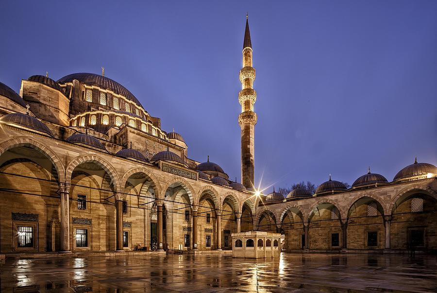 Suleymaniye Mosque Digital Art - Suleymaniye Mosque by Dorothy Binder