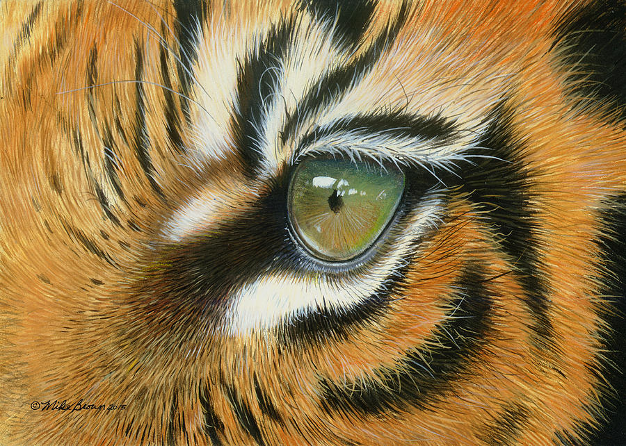 Tiger Painting - Sumatra by Mike Brown