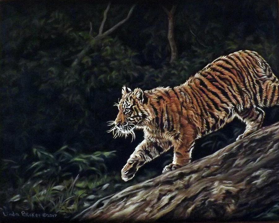 Sumatran cub by Linda Becker