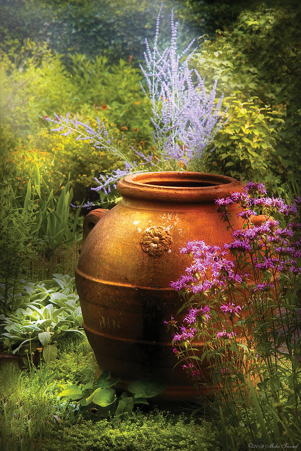 Savad Photograph - Summer - Landscape - The Urn by Mike Savad