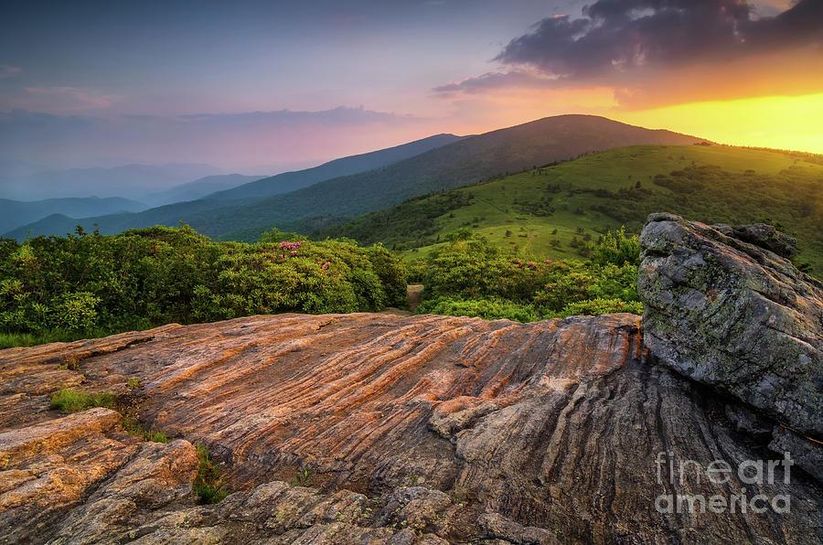 Summer Photograph - Summer Along The Appalachian Trail by Anthony Heflin