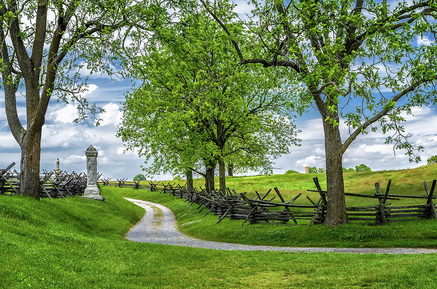 Summer at Antietam National Battlefield by Lori Coleman