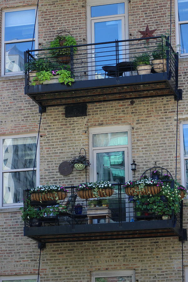 Auburn Photograph - Summer Balconies In Chicago Illinois by Colleen Cornelius