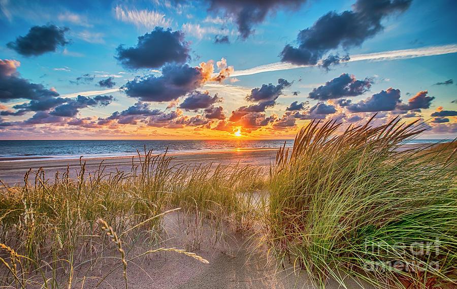 July Summer Beach by Alex Hiemstra