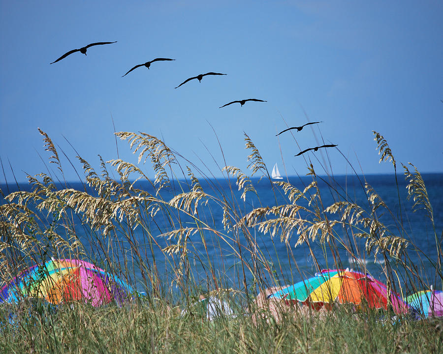 Beach Photograph - Summer Breeze by Adele Moscaritolo