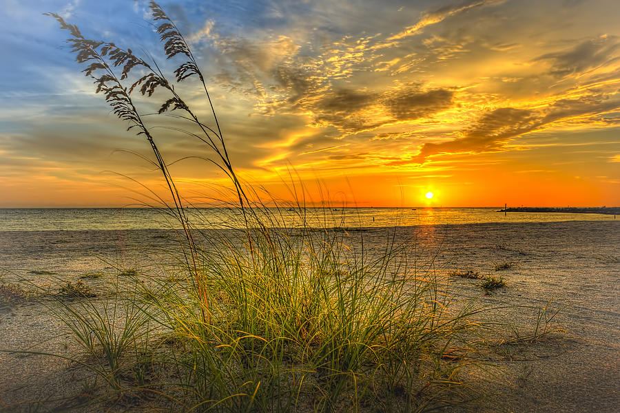 Summer Breeze Photograph - Summer Breezes by Marvin Spates