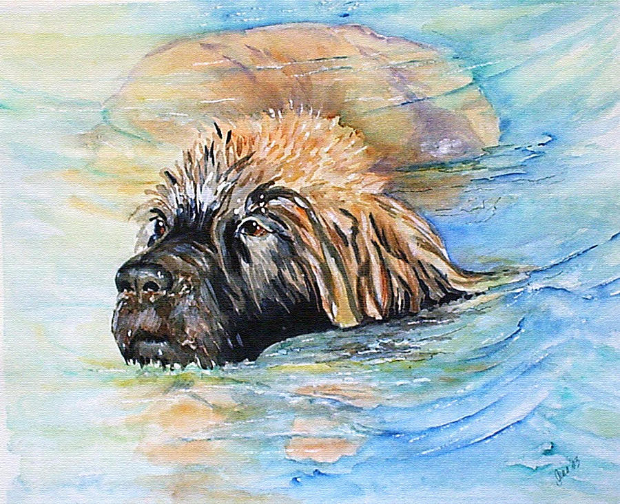 Canine Painting - Summer Daze by Gina Hall