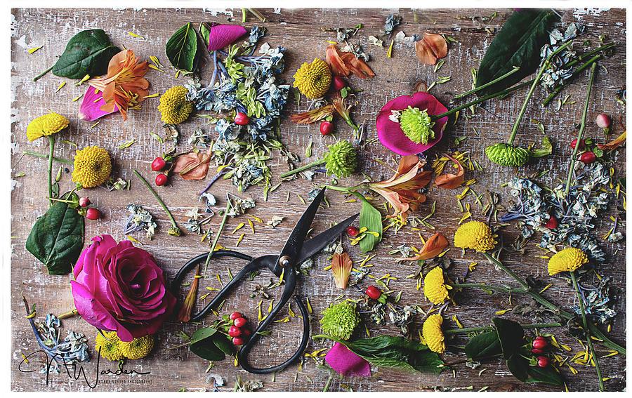 Summer Flowers II by Norma Warden