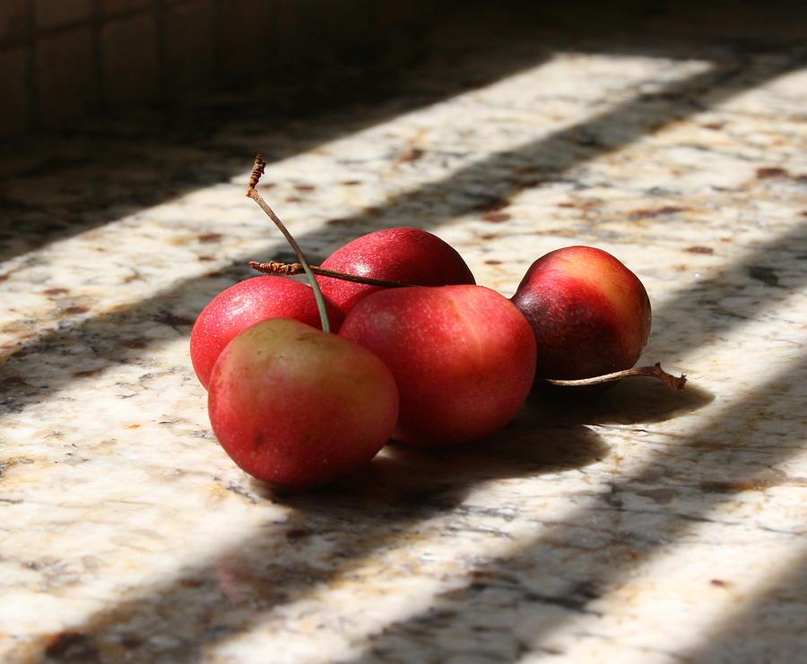 Cherry Photograph - Summer Fruit by Sherry Klander