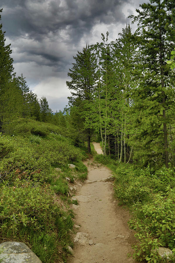 Storm Clouds Photograph - Summer Hike And Storm Clouds by Dan Sproul