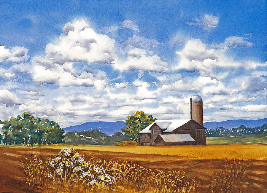 Farm Painting - Summer-in-the-georgian-triangle by Nancy Newman