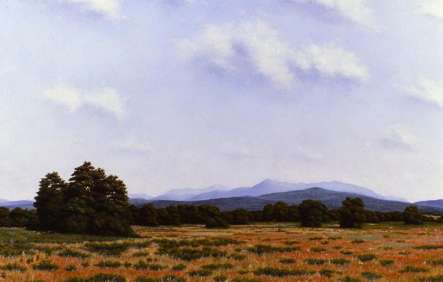Landscape Painting - Summer in the High Peaks of The Adirondacks by Anthony Petchkis