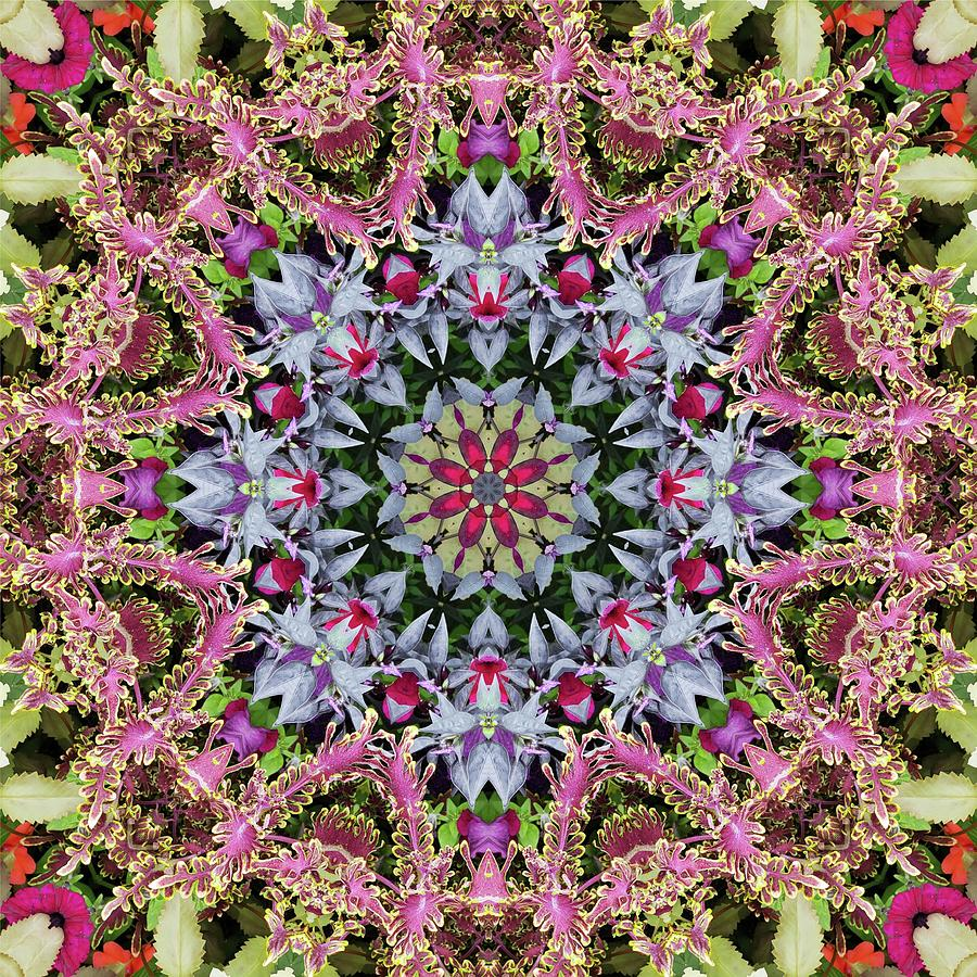 Garden Kaleidoscope At Olbrich >> Summer Leaves Kaleidoscope Olbrich Botanical Gardens Digital Art