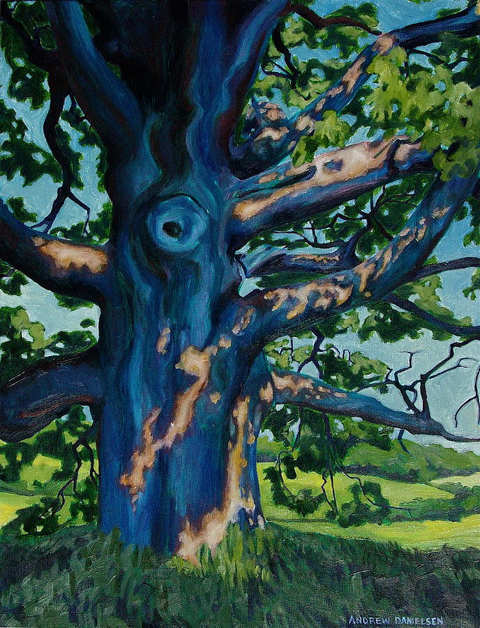 Tree Painting - Summer Light And Shadow by Andrew Danielsen