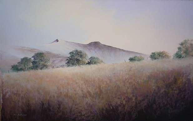 Meadows Painting - Summer Meadow Brecon Beacons by Mark Whittaker