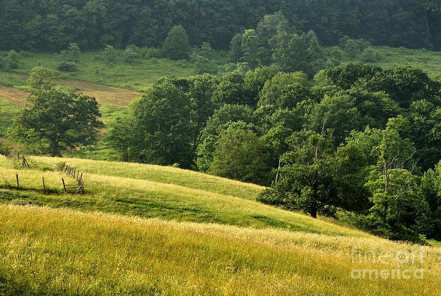 Summer Morning Photograph - Summer Morning On The Farm by Thomas R Fletcher