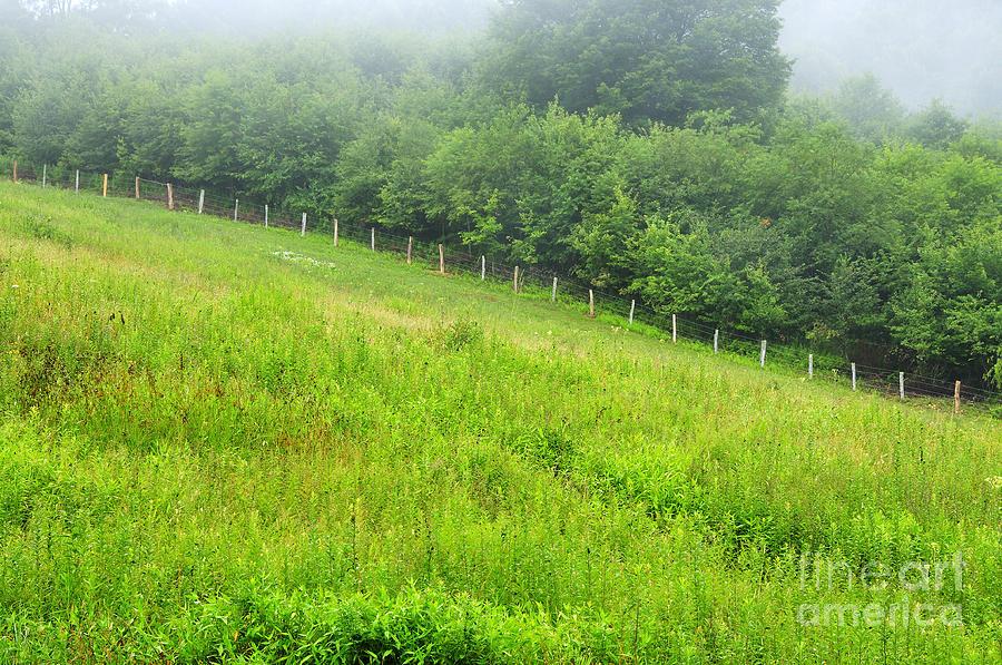 Summer Morning Photograph - Summer Morning Rising Mist by Thomas R Fletcher
