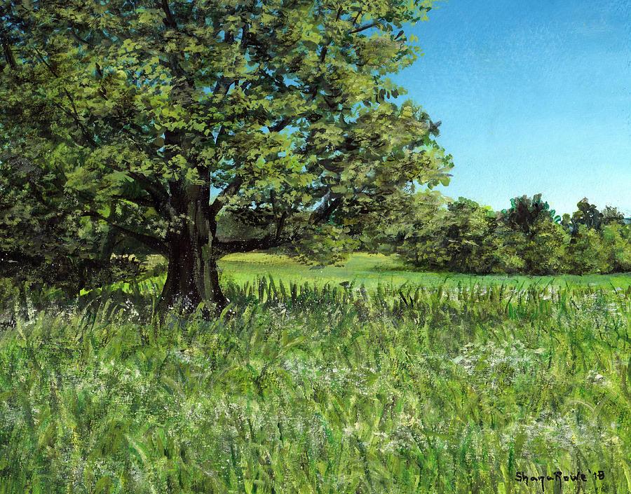 Summer Oak by Shana Rowe Jackson
