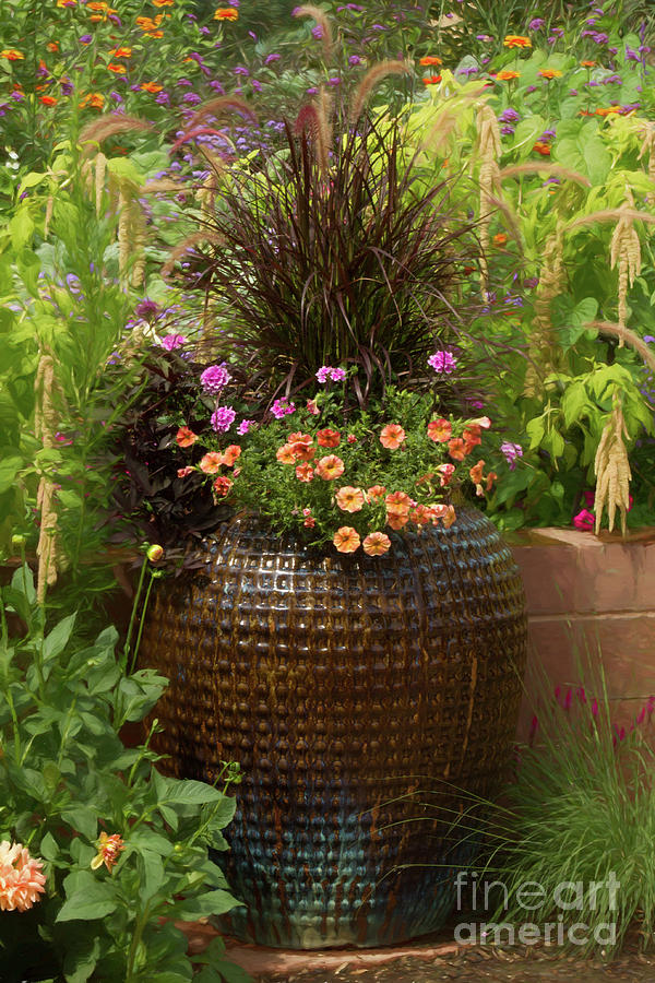 Botanic Gardens Photograph - Summer Pot by Marilyn Cornwell