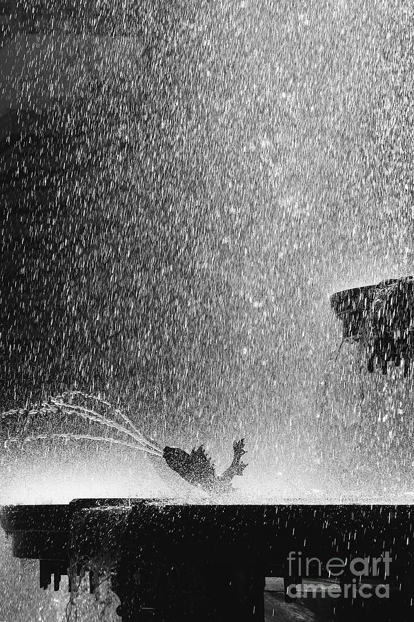 Summer Photograph - Summer Rain by Hideaki Sakurai
