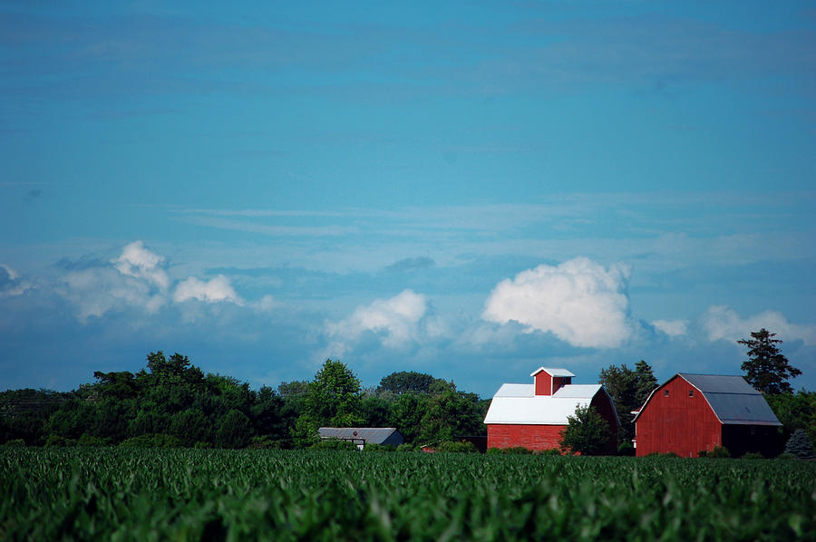 Barn Photograph - Summer Sky Summer Farm by Jame Hayes