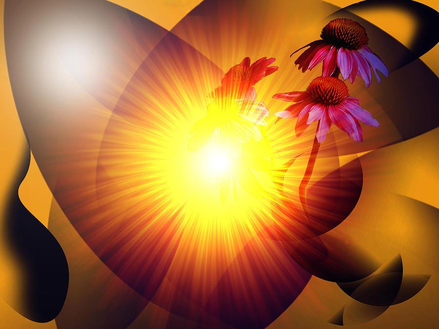 Solstice Digital Art - Summer Solstice II by Patricia Motley