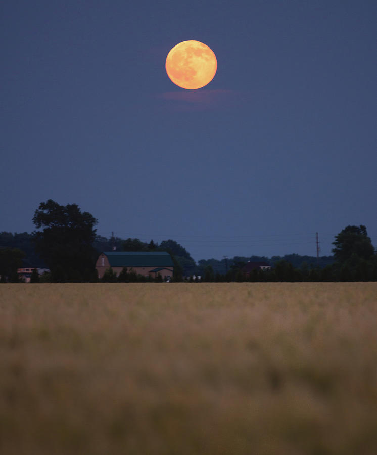 Summer Solstice Moonrise Photograph