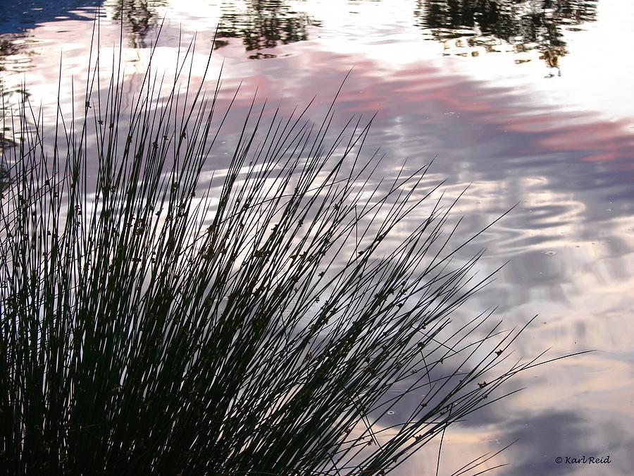 Reeds Photograph - Summer Sunset by Karl Reid