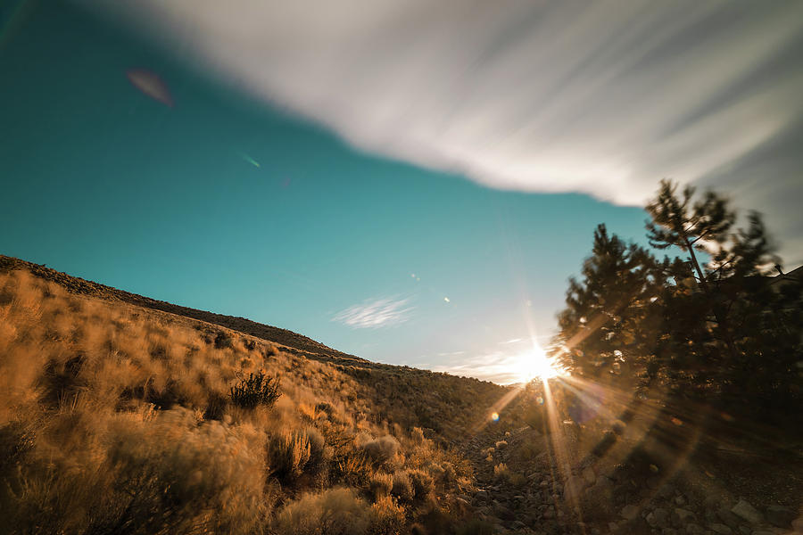Summer Sunset With Blue Sky, Cloud Movement, Trees And Sunburst In Northwest Reno, Nevada Photograph