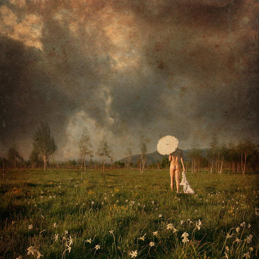 Landscape Photograph - Summer Walk  by Floriana Barbu