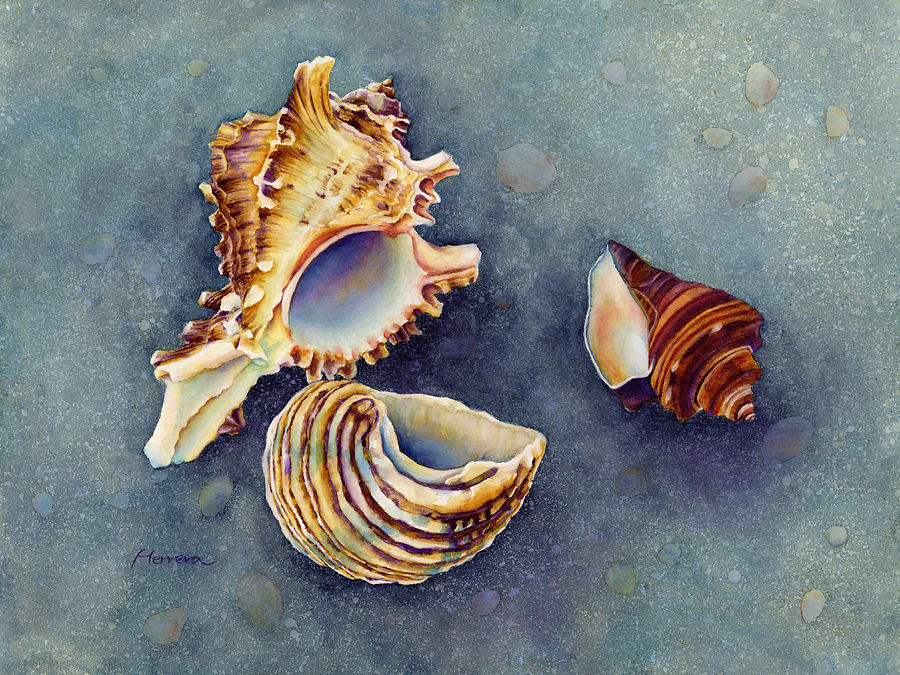 Seashell Painting - Summer Whispers by Hailey E Herrera
