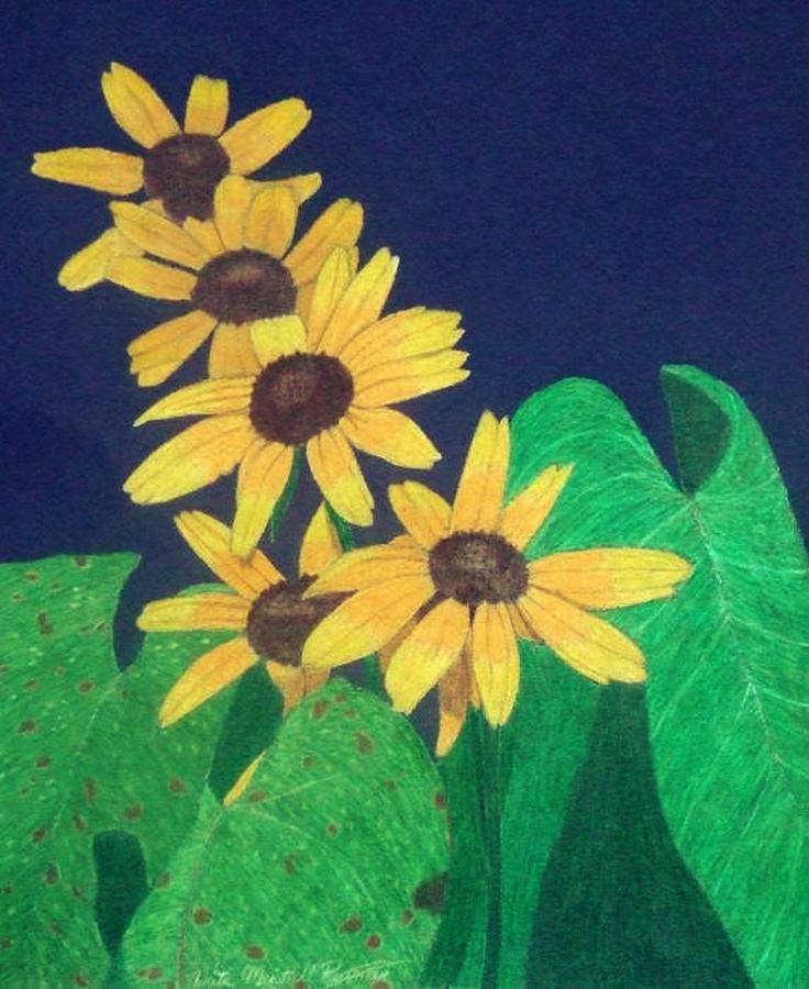 Black-eyed Susan Drawing - Summers End by Anita Putman