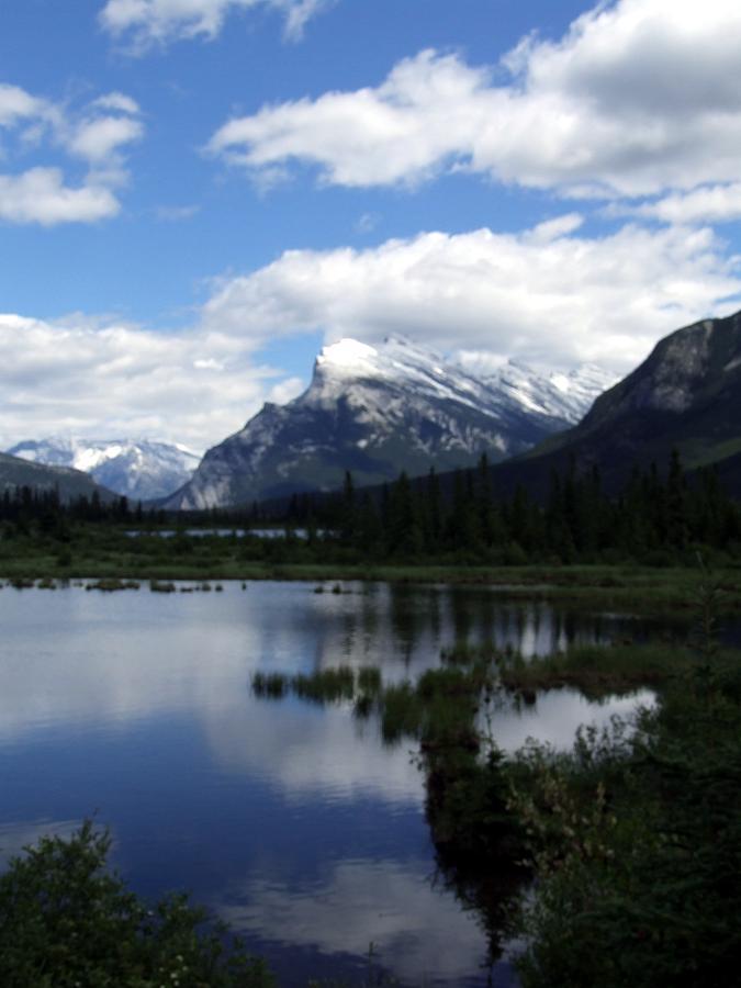 Landscape Photograph - Summertime In Vermillion Lakes by Tiffany Vest