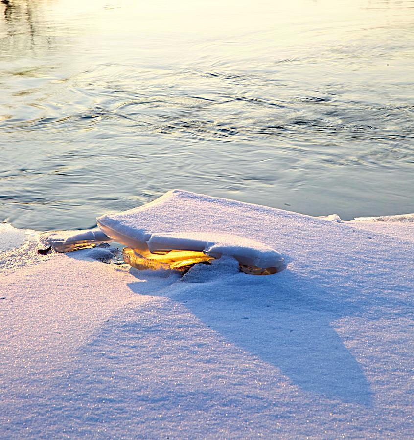 Sunshine Photograph - Sun And Ice by Robert Pearson