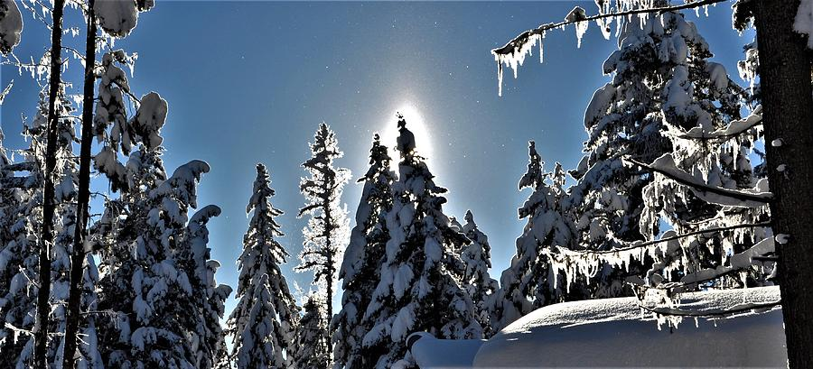 Sun and Snow by Mike Helland