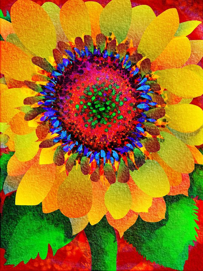 Flower Digital Art - Sun Burst by Mary Eichert